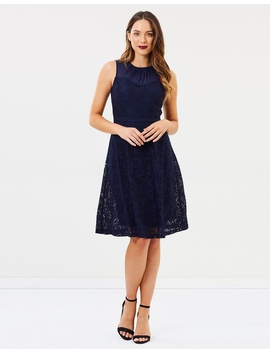 Daisy Mesh Fit And Flare Dress by Dorothy Perkins