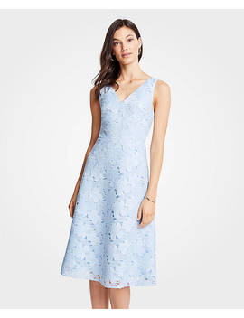 Petite Floral Lace Flare Dress by Ann Taylor
