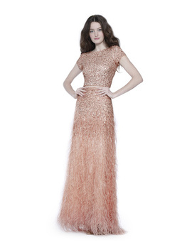 Ashton Embellished Ball Gown Skirt With Feathers by Alice And Olivia