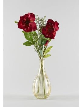 Hellebore In Glass Vase (40cm X 12cm X 12cm) by Matalan