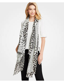 Spotted Scarf by Ann Taylor
