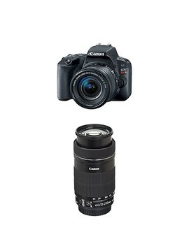 Canon Eos Rebel Sl2 Slr Camera W/ 18 55mm F/4 Stm Lens + Canon Dslr Bag, 48 Gb, Filter Kit, Flash & Bundle by Canon