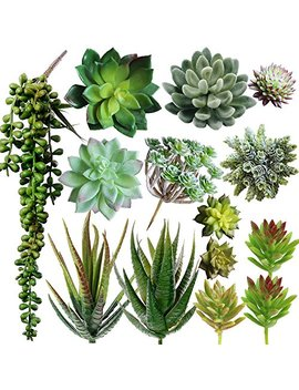 Supla Pack Of 14 Assorted Artificial Succulents Picks Textured Aloe Faux Succulent Pick Succulent Stems Fake Succulent Bouquet String Of Pearls Succulent Faux Succulent Floral Arrangement Accent by Supla