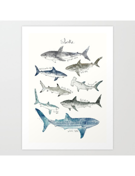 Sharks Art Print by