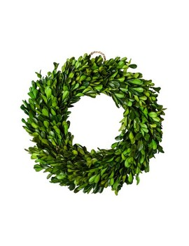"Preserved Boxwood Leaves Wreath (10.75"")   Smith & Hawken™ by Shop Collections"