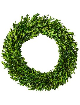 "Preserved Boxwood Leaves Wreath   (21.25"")   Smith & Hawken™ by Shop Collections"