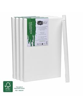 Artina Academy Blank Canvases 5 Set 20x30 Cm 100 Percents Cotton A4 Artist Fsc Certified Canvas For Painting Framed Stretched Double Primed by Amazon