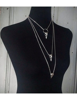 Morgana   Raben   Vogel Schädel Halskette   Halsband   Lasso   Anhänger   Witchy   Präparatoren   Goth   Kuriositäten   Spuk   Dark   Makaber   Geschenk by Openthecellardoor