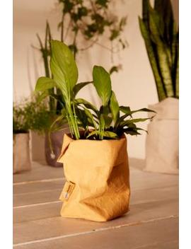 Papyr Maxx Bag Planter by Papyr Maxx
