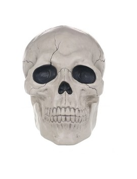 17'' Halloween Giant Skull   Hyde And Eek! Boutique™ by Shop All Hyde And Eek! Boutique™