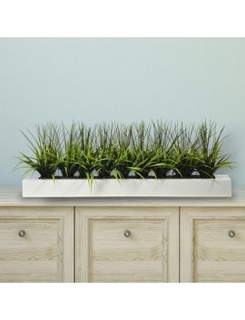 Orren Ellis Desktop Grass In Planter & Reviews by Orren Ellis