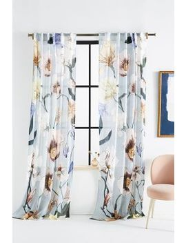 Zoey Curtain by Anthropologie