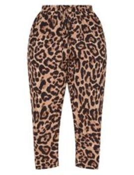 Plus Tan  Leopard Print Casual Trousers  by Prettylittlething