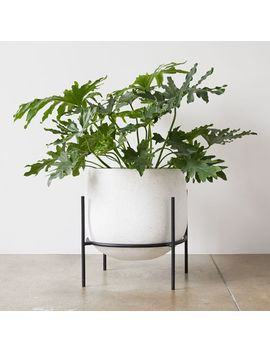 Stratus Standing Planters by West Elm