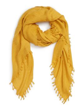Solid Fringed Scarf by Treasure & Bond