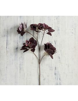 Faux Burned Branch   Burgundy by Pottery Barn