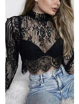 Eyelash Lace Long Sleeve Crop Top by Lupsona