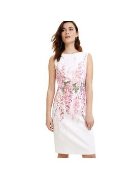 Phase Eight   Pale Pink And Ivory Jessica Printed Floral Dress by Phase Eight