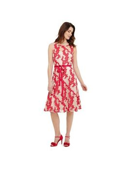 Phase Eight   Pink Adele Embroidered Dress by Phase Eight