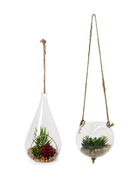 Terrarium Accent by Three Hands Corp
