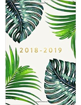 "2018 2019: Daily Monthly & Weekly Academic Student Planner | 2018 2019: Ferns, August 2018   July 2019, 6"" X 9"" (Academic Student Planner With ... Women, Teenagers, Girls, Students & Teachers) by Creative Notebooks"