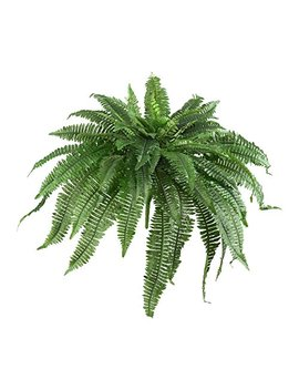"Nearly Natural 6051 S2 48"" Boston Fern (Set Of 2) by Nearly Natural"