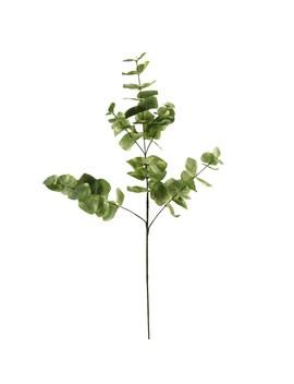 Ashland® Eucalyptus Branch by Ashland