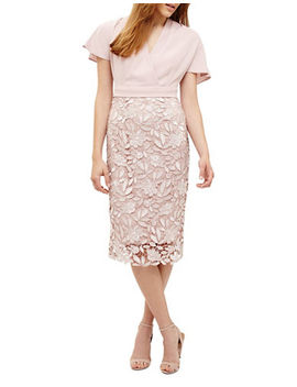 Moriko Lace Cocktail Dress by Phase Eight