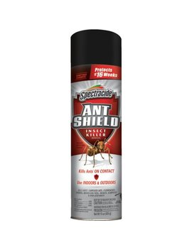 Spectracide Ant Shield Insect Killer Aerosol (Hg 51200) by Spectracide