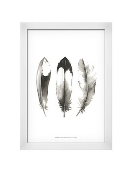 Watercolor Feathers Ii Framed Art Print by Shop All Art.Com