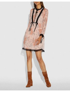 Rose Print Dress by Coach