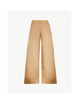 Sierra Semi Sheer Organza Trousers by Arje