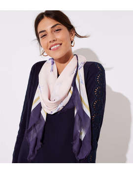 Bluebird Scarf by Loft