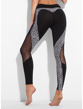 Mesh Panel Leopard Leggings by Romwe