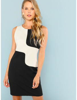 Two Tone Sleeveless From Fitted Dress by Shein