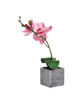 Wilko Artificial Pink Orchid In Square Pot by Wilko