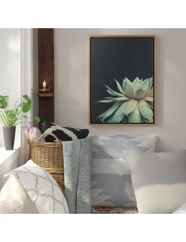 Bungalow Rose 'sylvie Succulent' Framed Photographic Print On Canvas & Reviews by Bungalow Rose