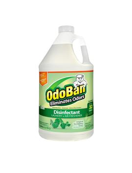 1 Gal. Eucalyptus Disinfectant, Laundry And Air Freshener, Mold And Mildew Control, Multi Purpose Concentrate by Odo Ban