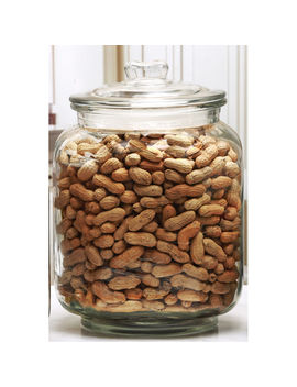7 L Jumbo Glass Peanut Jar With Lid by At Home