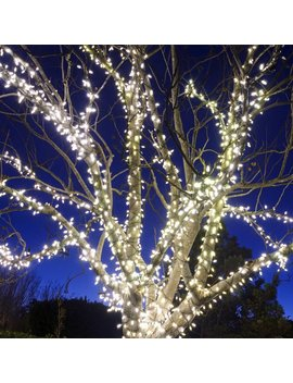 Touch Of Eco 100 Solar Light 39.8 Ft. String Lights & Reviews by Touch Of Eco