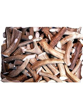 Premium Deer Antler Pieces   By Big Dog Antler Chews   Antlers By The Pound, One Pound   Six Inches Or Longer   Medium, Large And Xl   Happy Dog Guarantee! by Big Dog Antler Chews