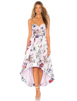 Clemson Dress by Parker Black