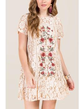 Kourtney Embroidered Lace Shift Dress by Francesca's