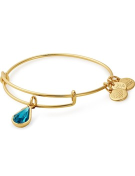 December Birth Month Charm Bangle With Swarovski® Crystals by Alex And Ani