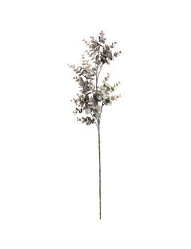 Green & Purple Eucalyptus Filler Stem By Ashland® by Ashland