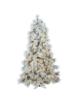 7.5 Ft. Heavily Flocked Northern Pine With 750 Clear Lights And 85 Warm White Led Lights by Home Depot