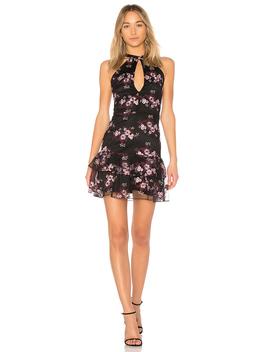 Luana Dress by Parker