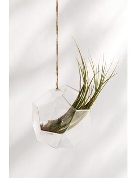 Dodecahedron Hanging Terrarium by Urban Outfitters