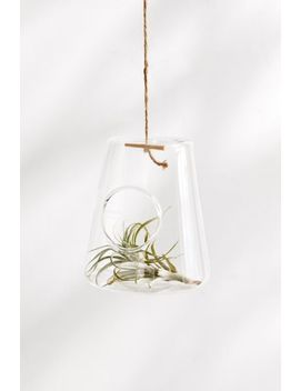 Isosceles Hanging Terrarium by Urban Outfitters