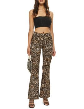 Moto Leopard Print Flare Jeans by Topshop